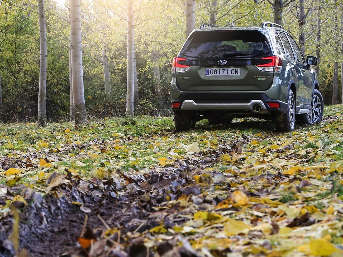 Subaru Forester Eco Hybrid (1)