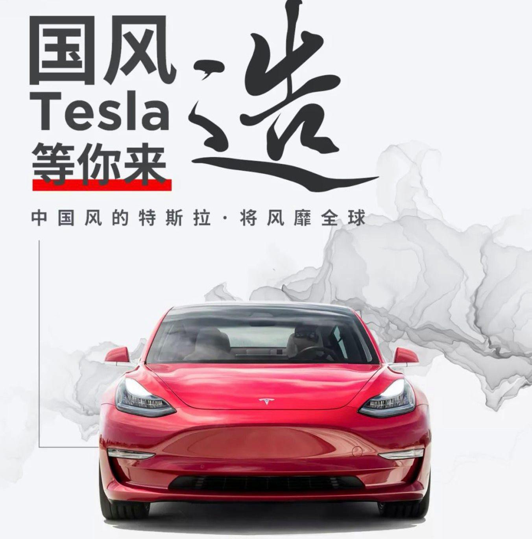 Tesla Modelos Chinos Exclusivos 4