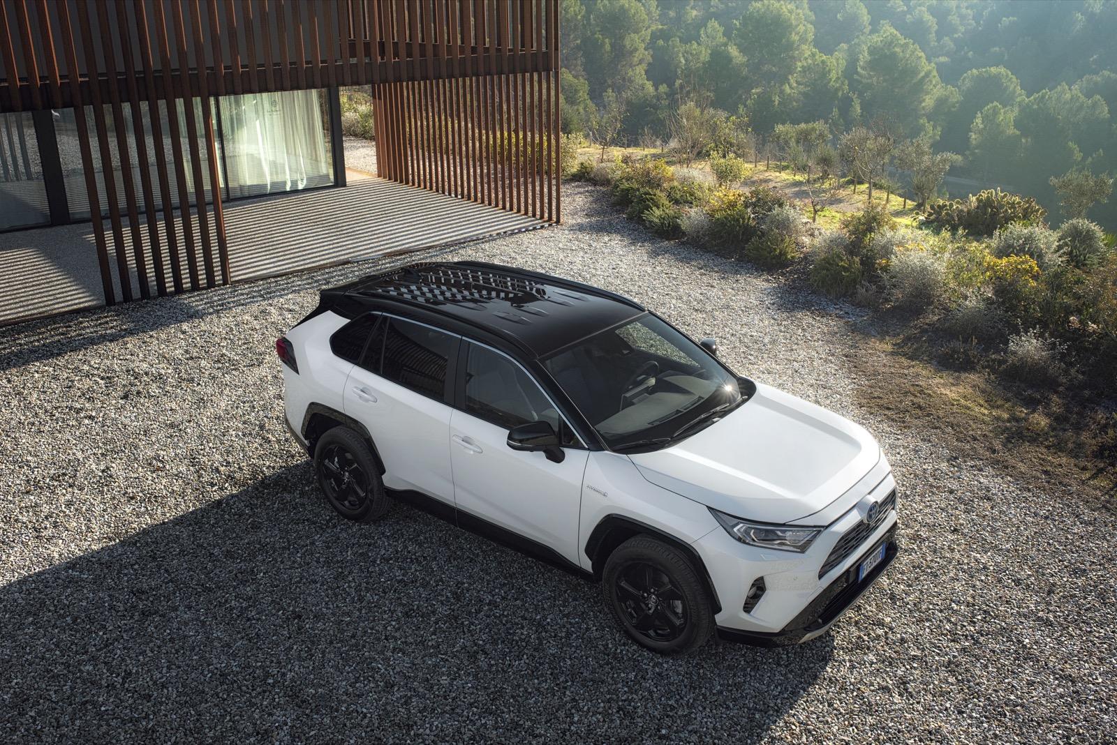 2019 Toyota Rav4 Stat 09 675100