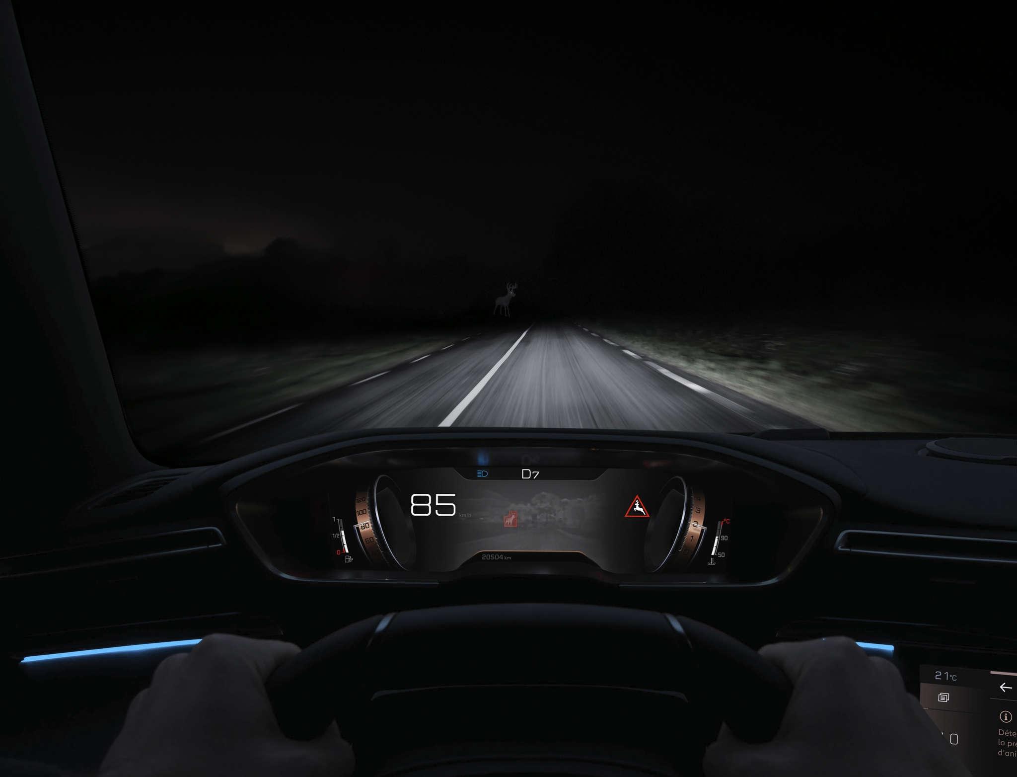 Conducir De Noche Nocturno Calzada Carretera