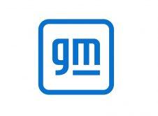 Gm One Color Logo
