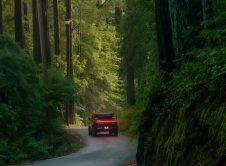 Rivian Adventure Network Forest