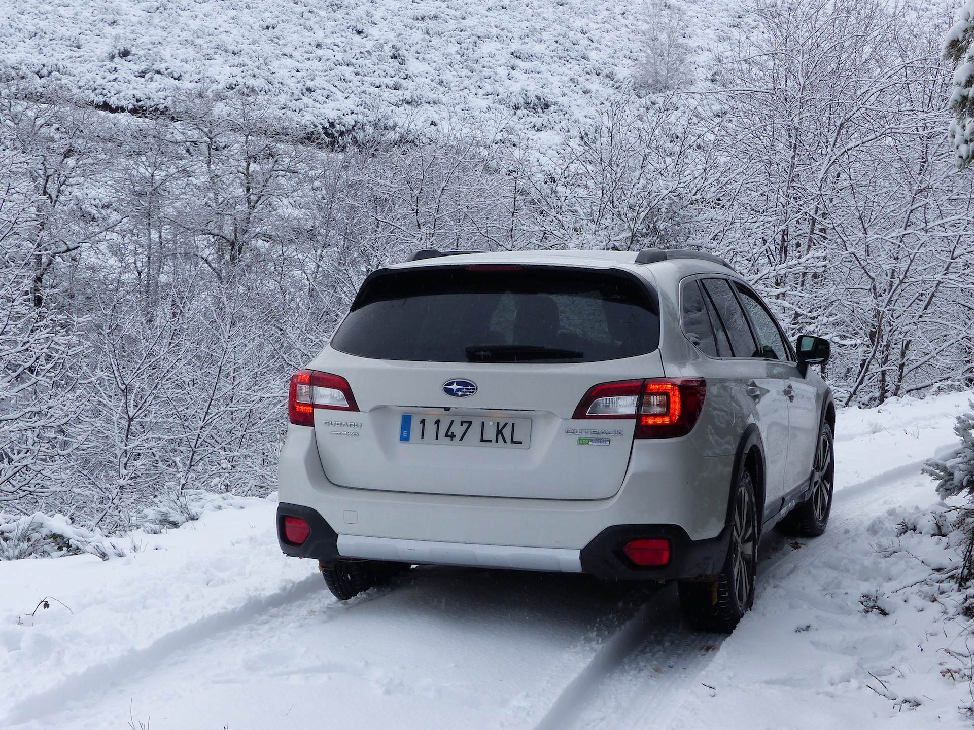 Prueba Subaru Outback Glp 24
