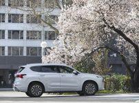 Hyundai Santa Fe 42