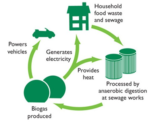 GENeco_Bio-Bug_biogas_metanoa