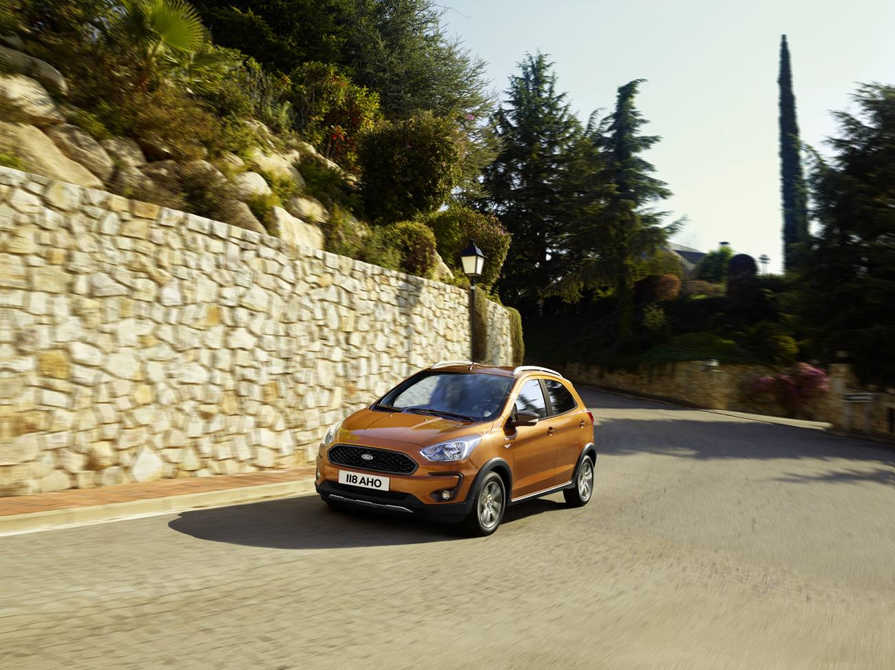 Ford Active
