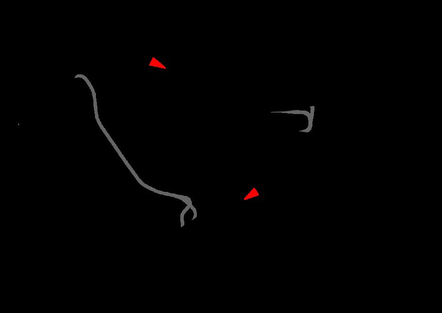 El Circuito de Hockenheim es donde se corre el GP de Alemania