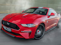 Ford Mustang Wolf Racing 01