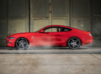 Ford Mustang Wolf Racing 03