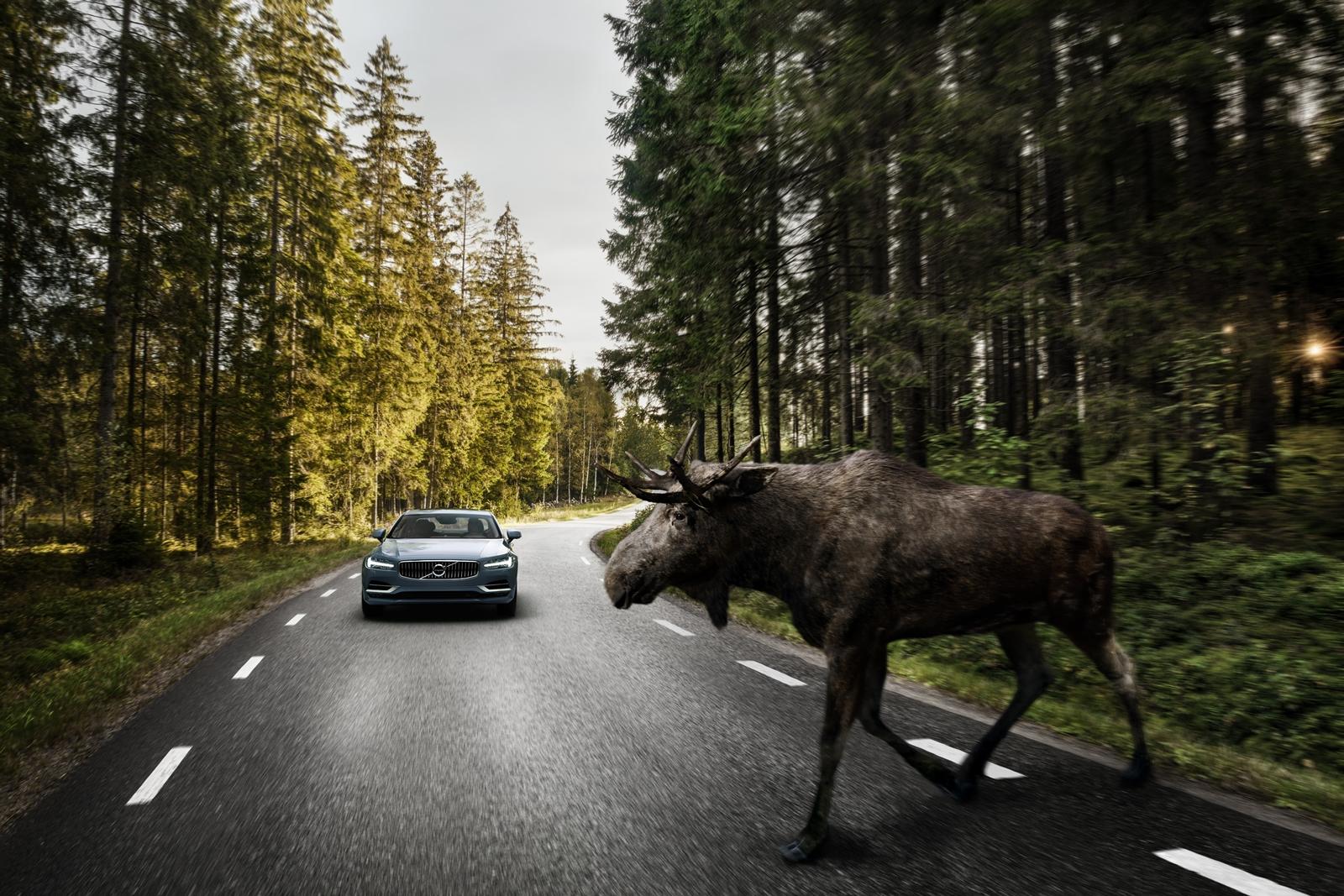 Exterior Large Animal Detection Volvo S90 2