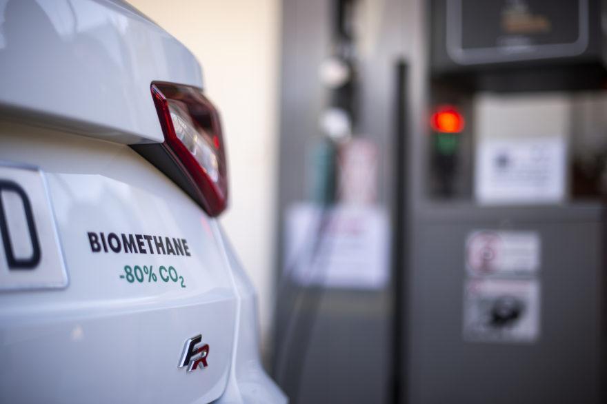 Seat Combustible Biometano 1