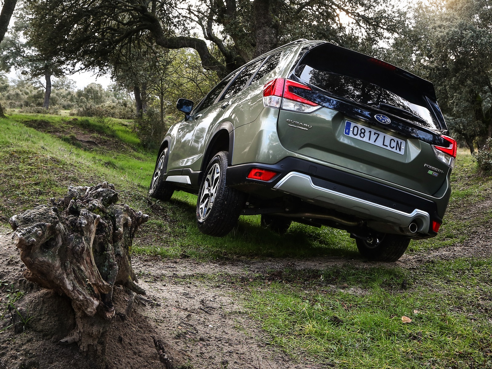 Prueba Subaru Forester Eco Hybrid (12)