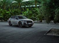 Audi Q2 2021 (1)