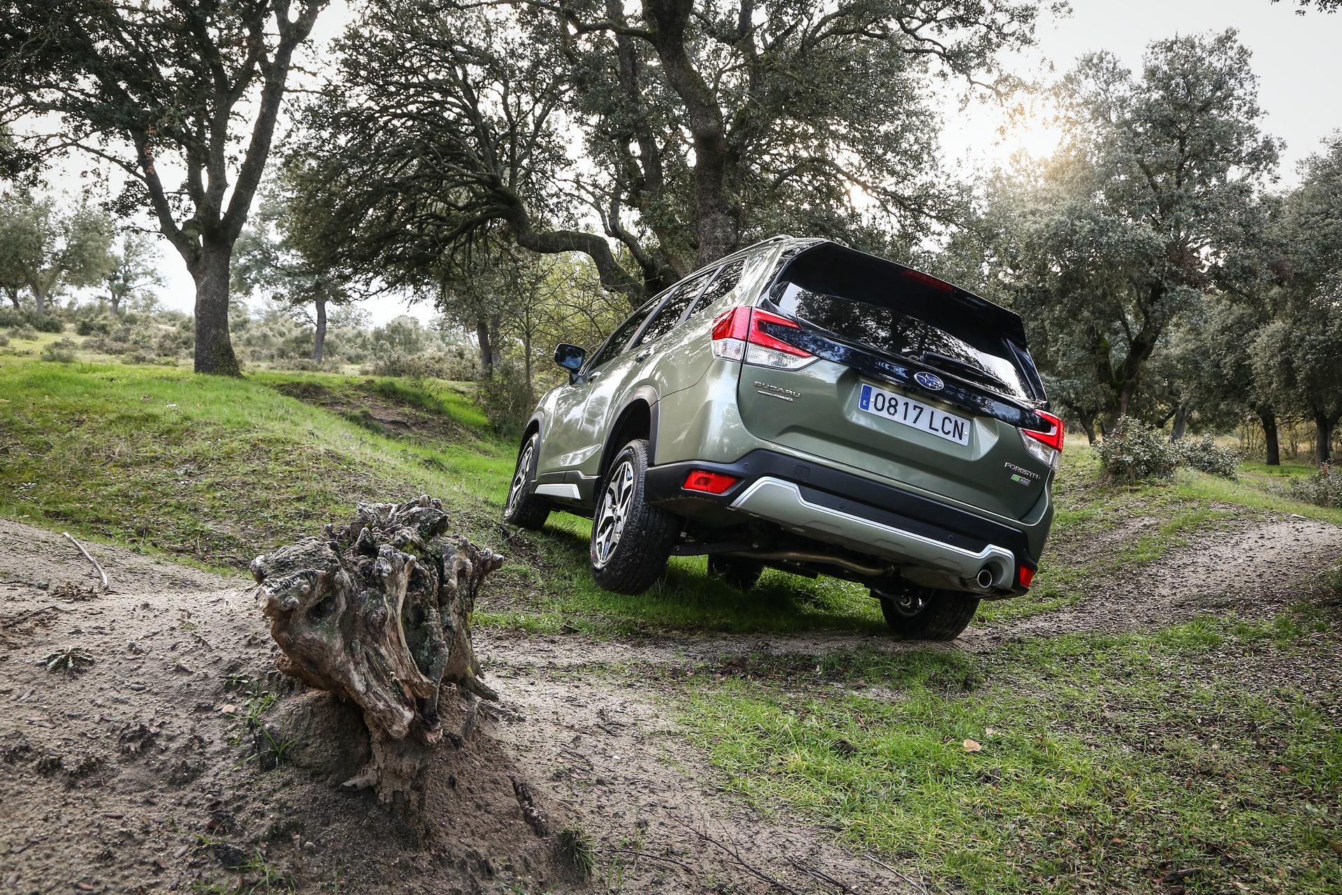 Subaru Forester Hibrido 14
