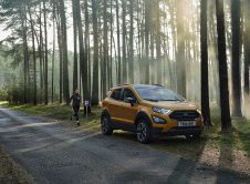 Ford Ecosport Active 2020 (8)