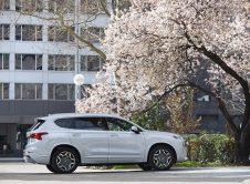 Hyundai Santa Fe 2021 30